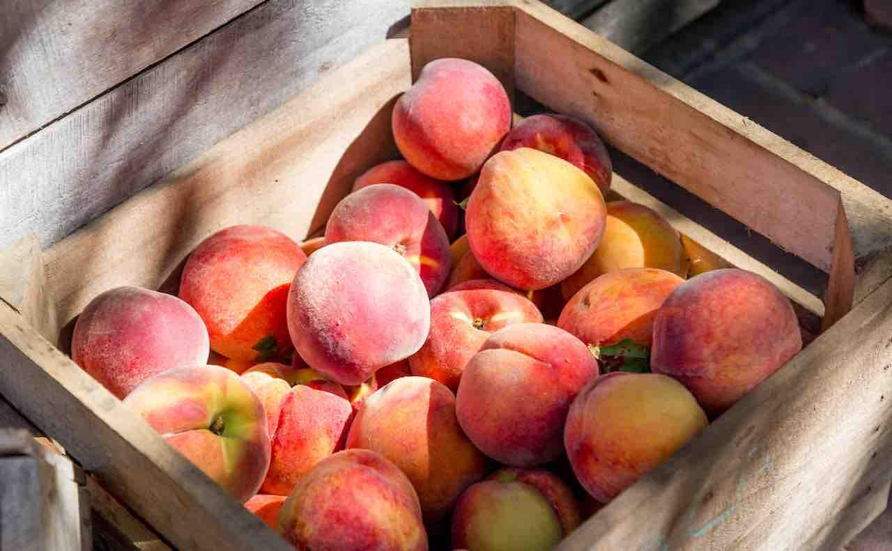 箱に入ったたくさんの桃